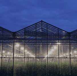 Agro-industrial lighting
