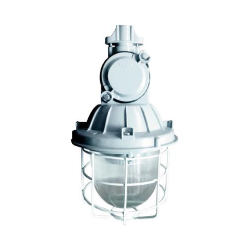 Lamp DSP23 (-011, -021)